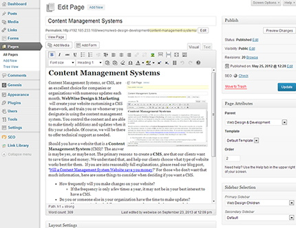 Content Management System Editing